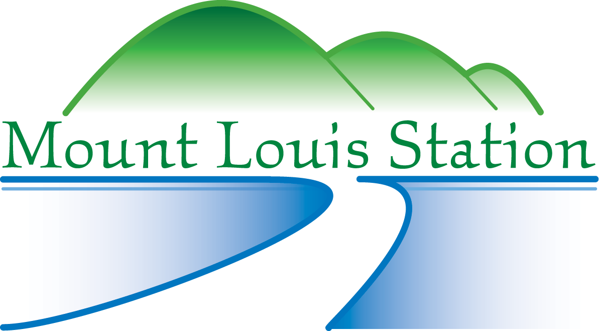 Mount Louis Cattle Station